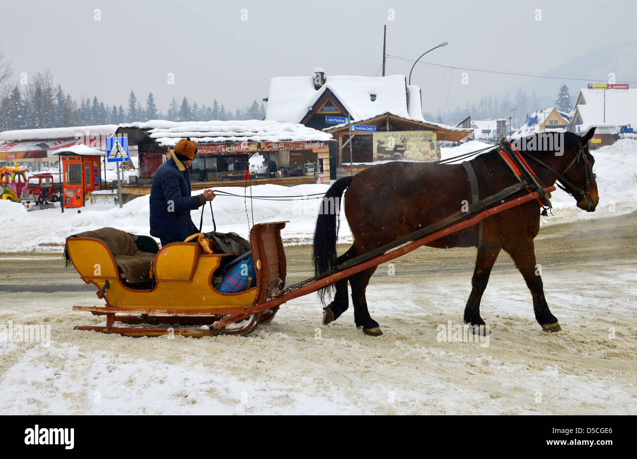 Horse drawn sleigh, Zakopane, Poland Stock Photo