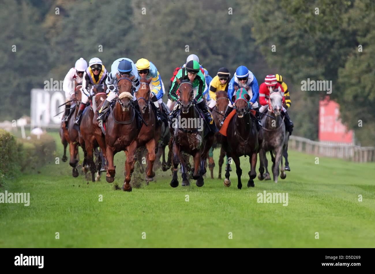 Hoppegarten, Germany, horses and jockeys during one horse race - Stock Image
