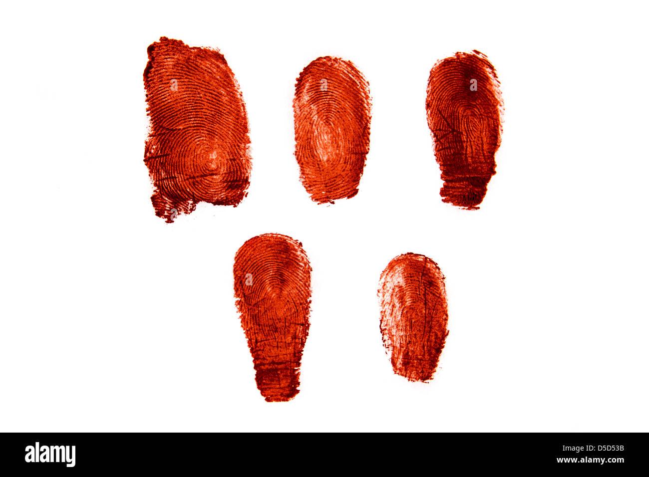 Bloody fingerprints isolated on white background - Stock Image