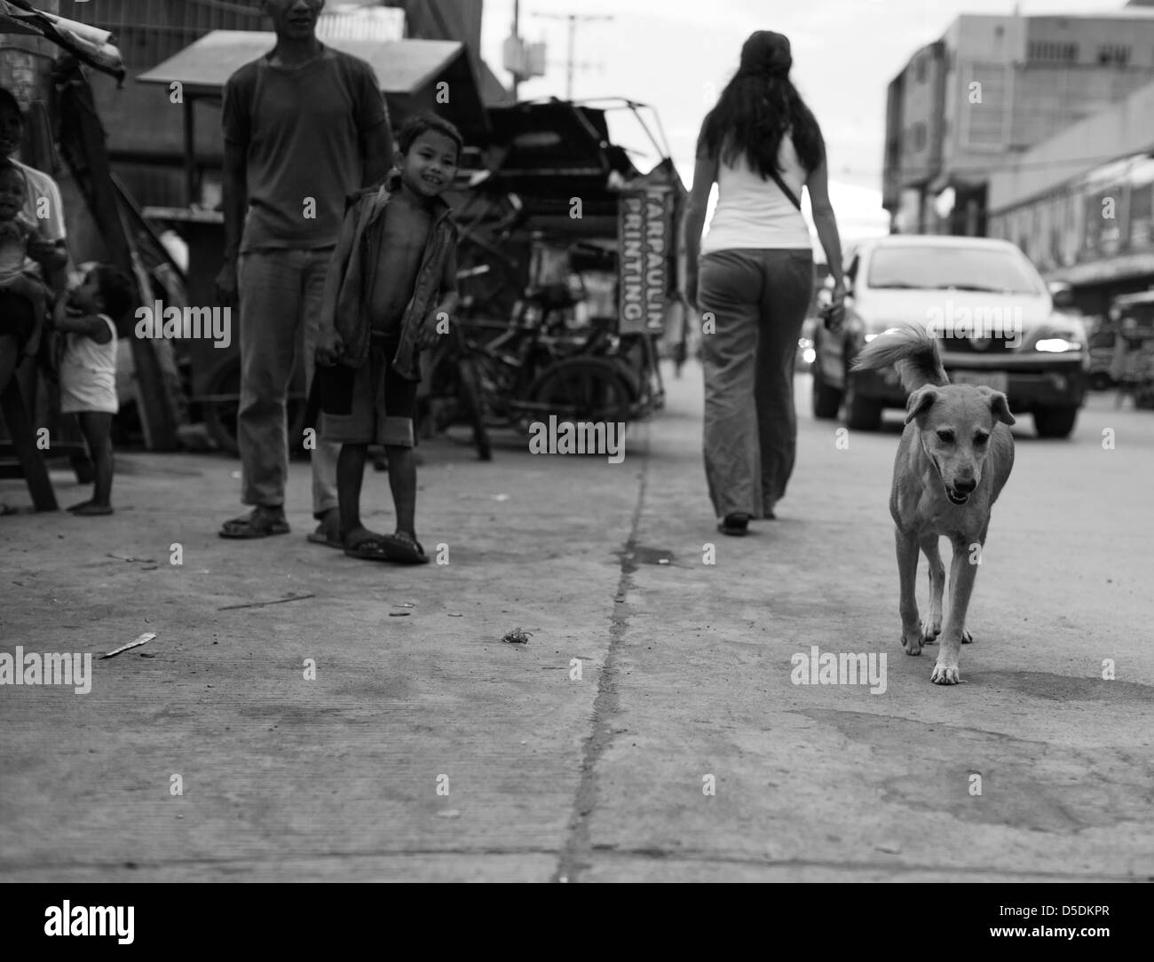 Stray dog walking down the street on Cagayan de Oro, Philippines - Stock Image