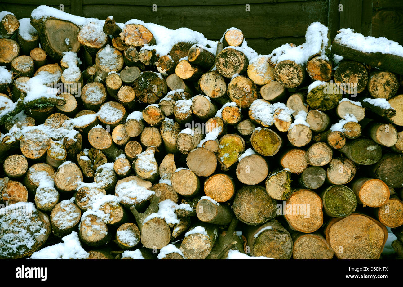 LOGS IN SNOW WOODPILE - Stock Image
