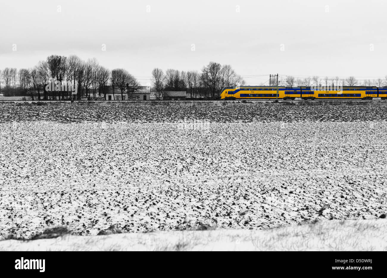 Passing yellow train of the Dutch Railways  in a snow covered landscape. Zeeland, Netherlands. B/W - Stock Image