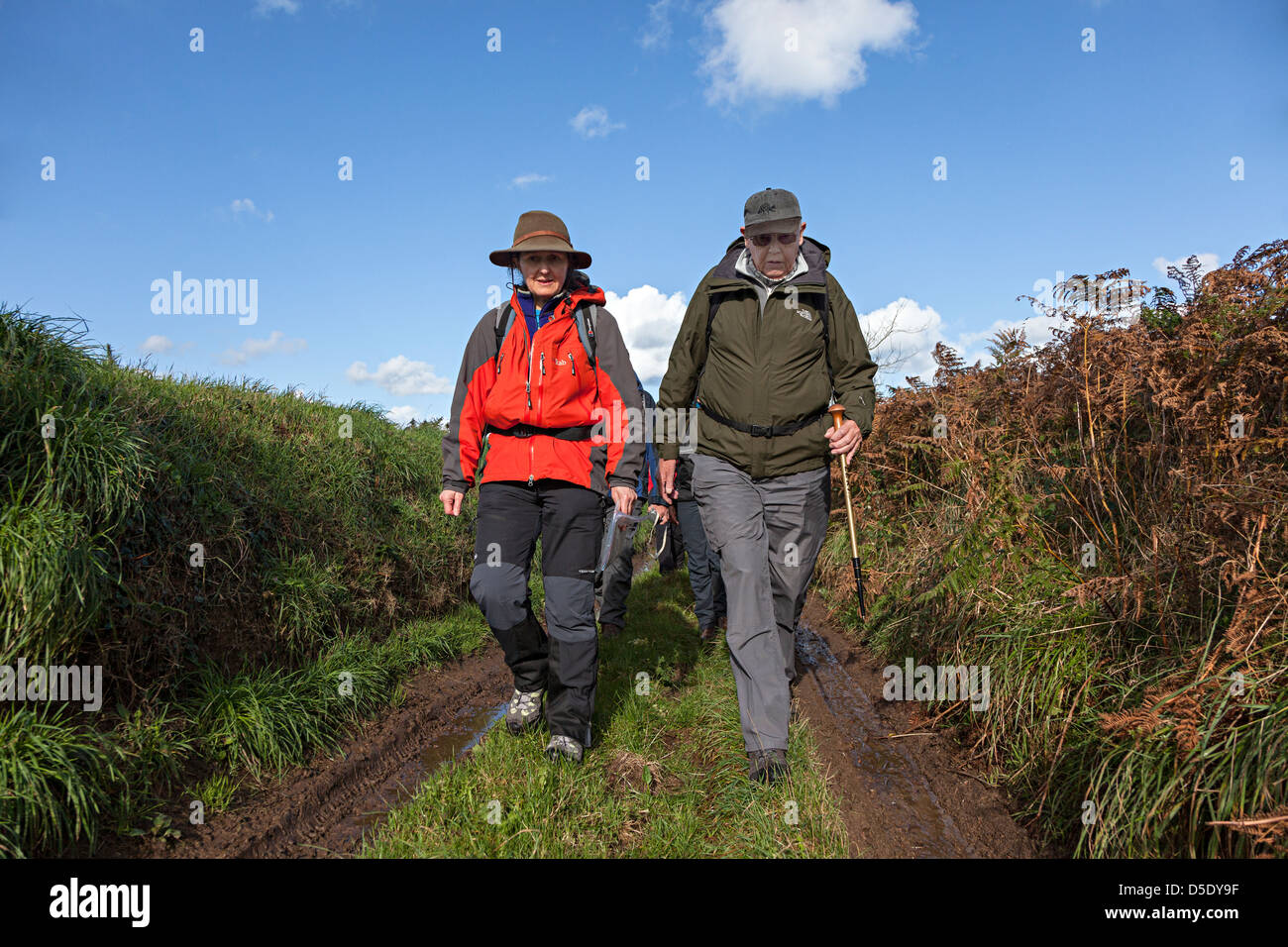 Led group on nature and natural history ramble walking on track across island of Jersey, Channel Islands, UK - Stock Image