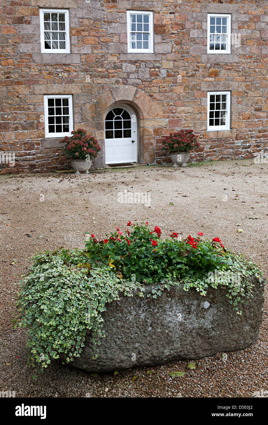 Flowers growing in stone trough outside country house, Jersey, Channel Islands, UK - Stock Image