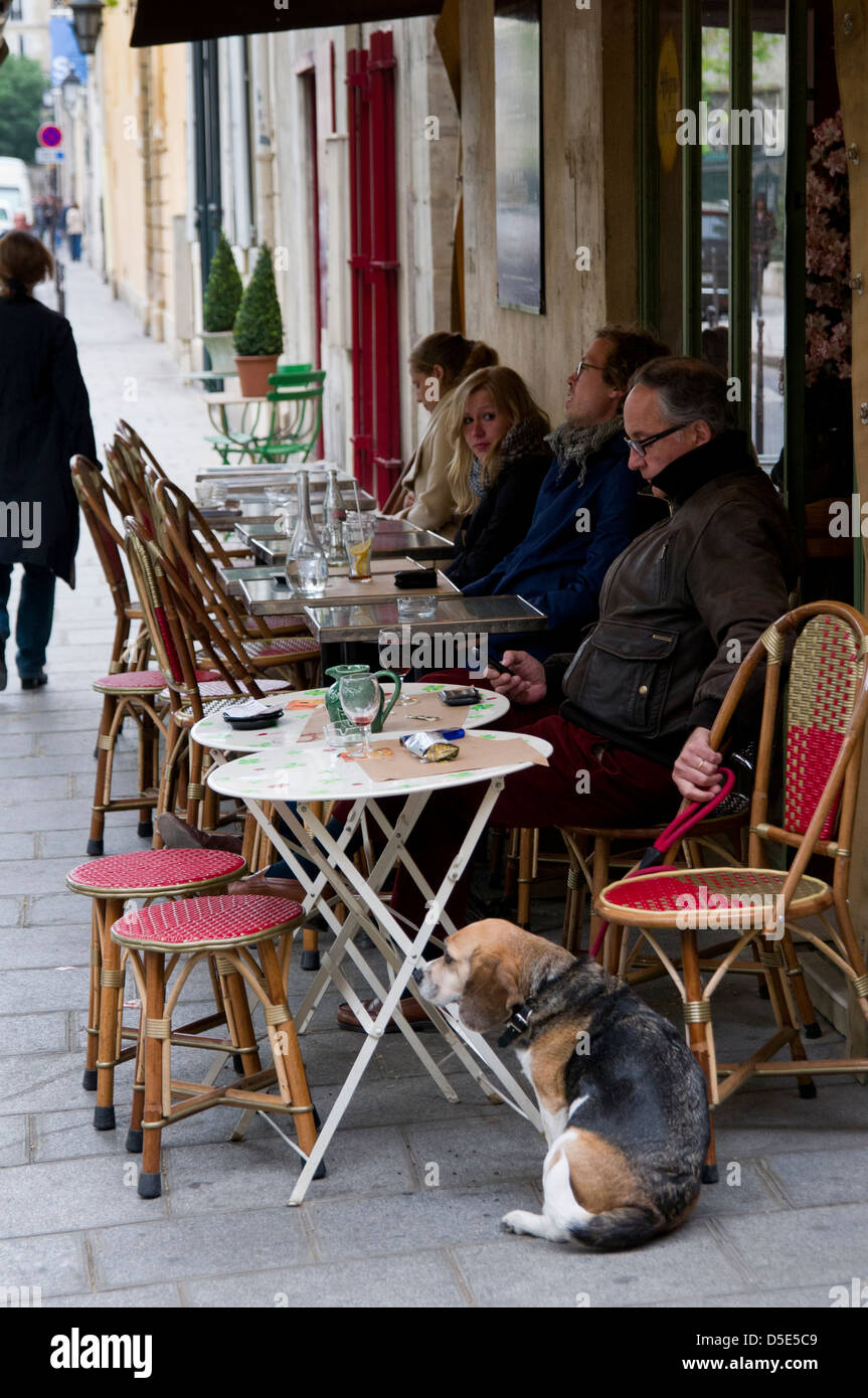 Parisians and blood hound eating at Le Sevigne street cafe and Brasserie on Rue du Parc-Royal, Paris, France - Stock Image