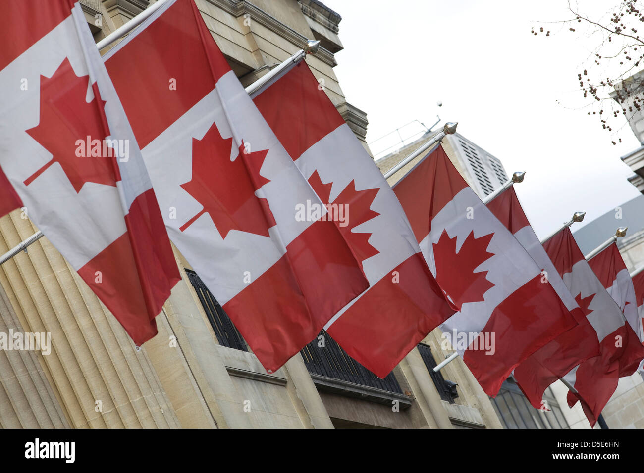 The National Flag of Canada flying at the Canadian embassy in London England Stock Photo