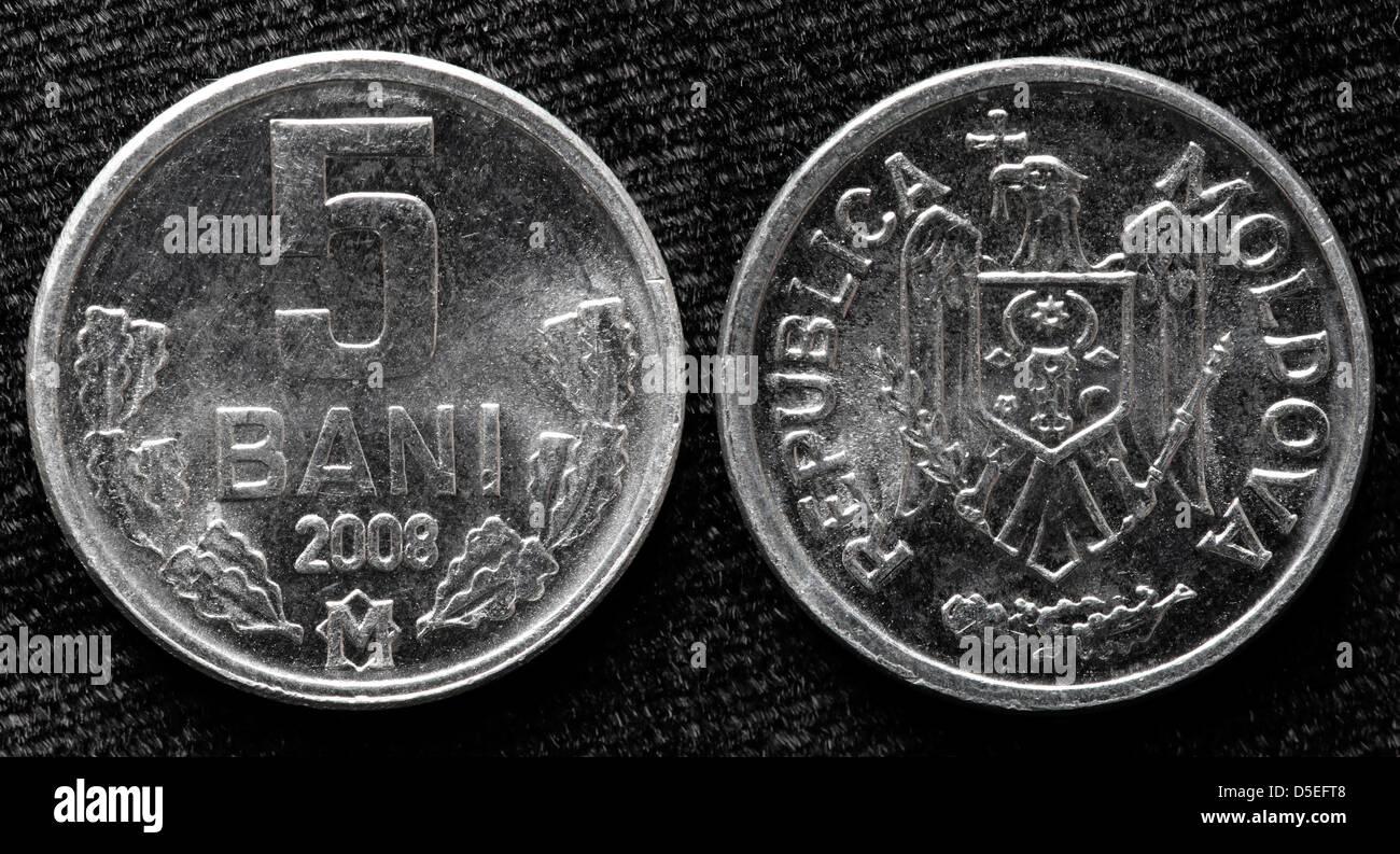 5 Bani coin, Moldova, 2008 - Stock Image
