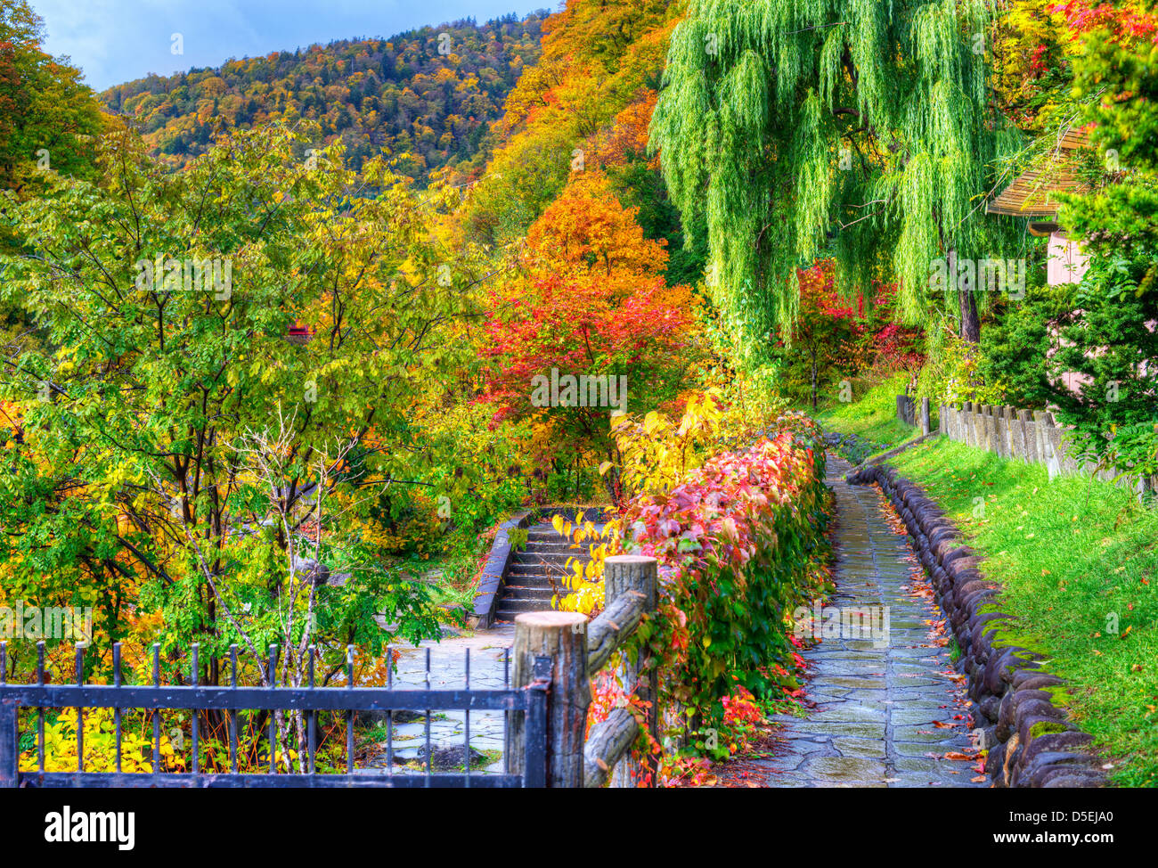 seasonal fall foliage in Jozankei, Japan. - Stock Image