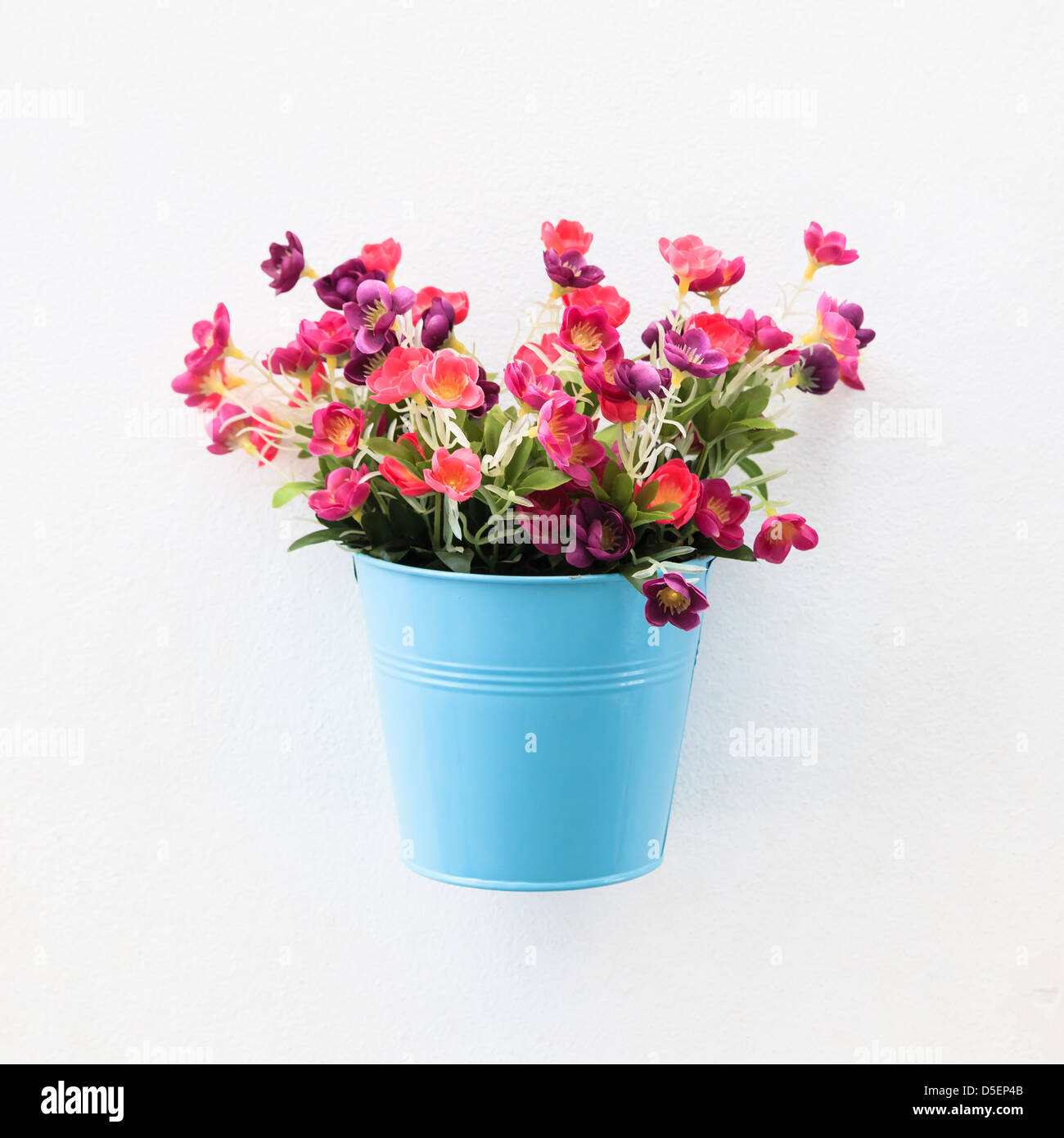 Colorful flowerpot on the white concrete wall - Stock Image