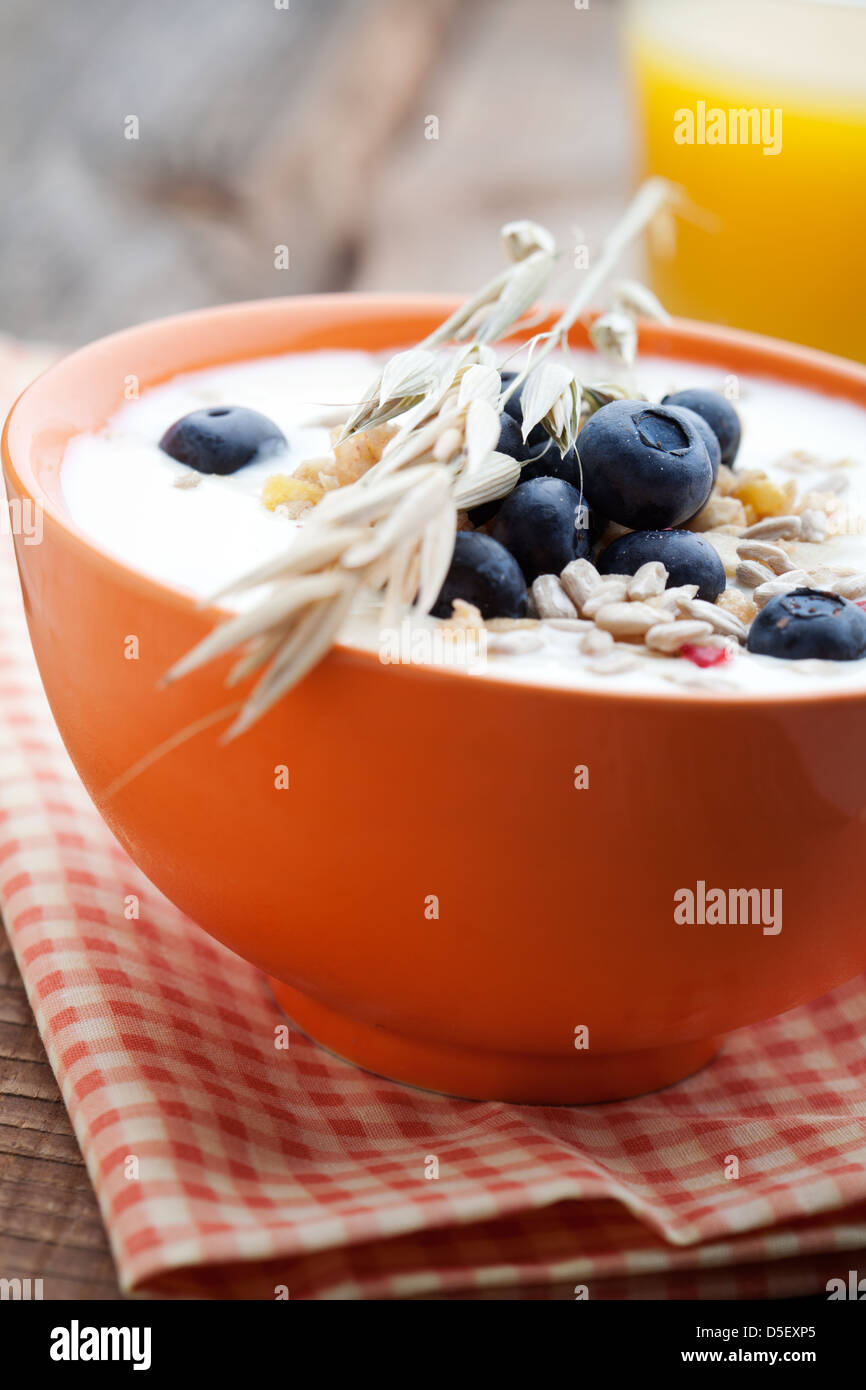 Yogurt with fresh blueberries and fruit muesli - Stock Image