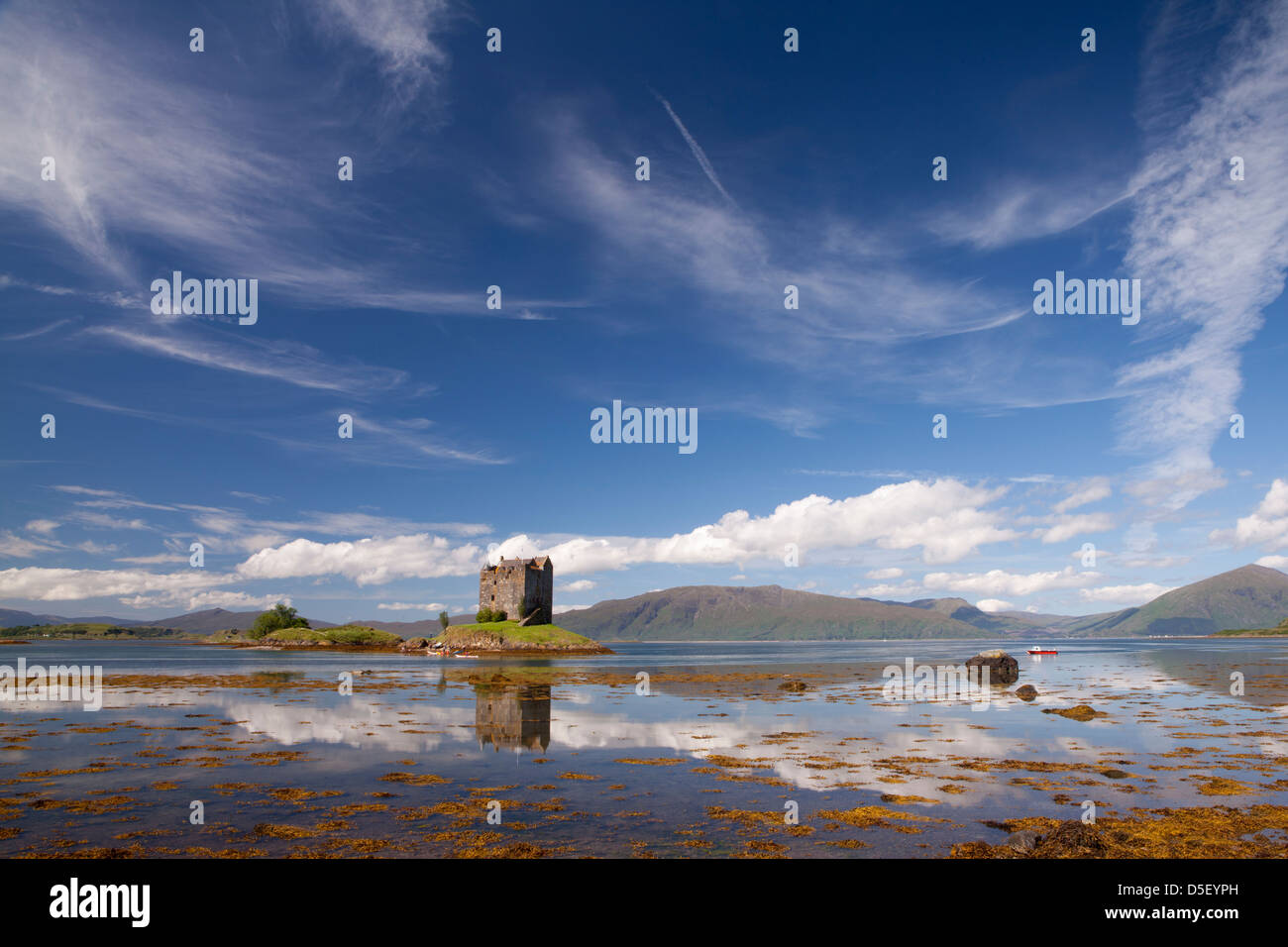 Castle of Stalker near Appin village - An Apainn -, Highlands, Scotland - Stock Image