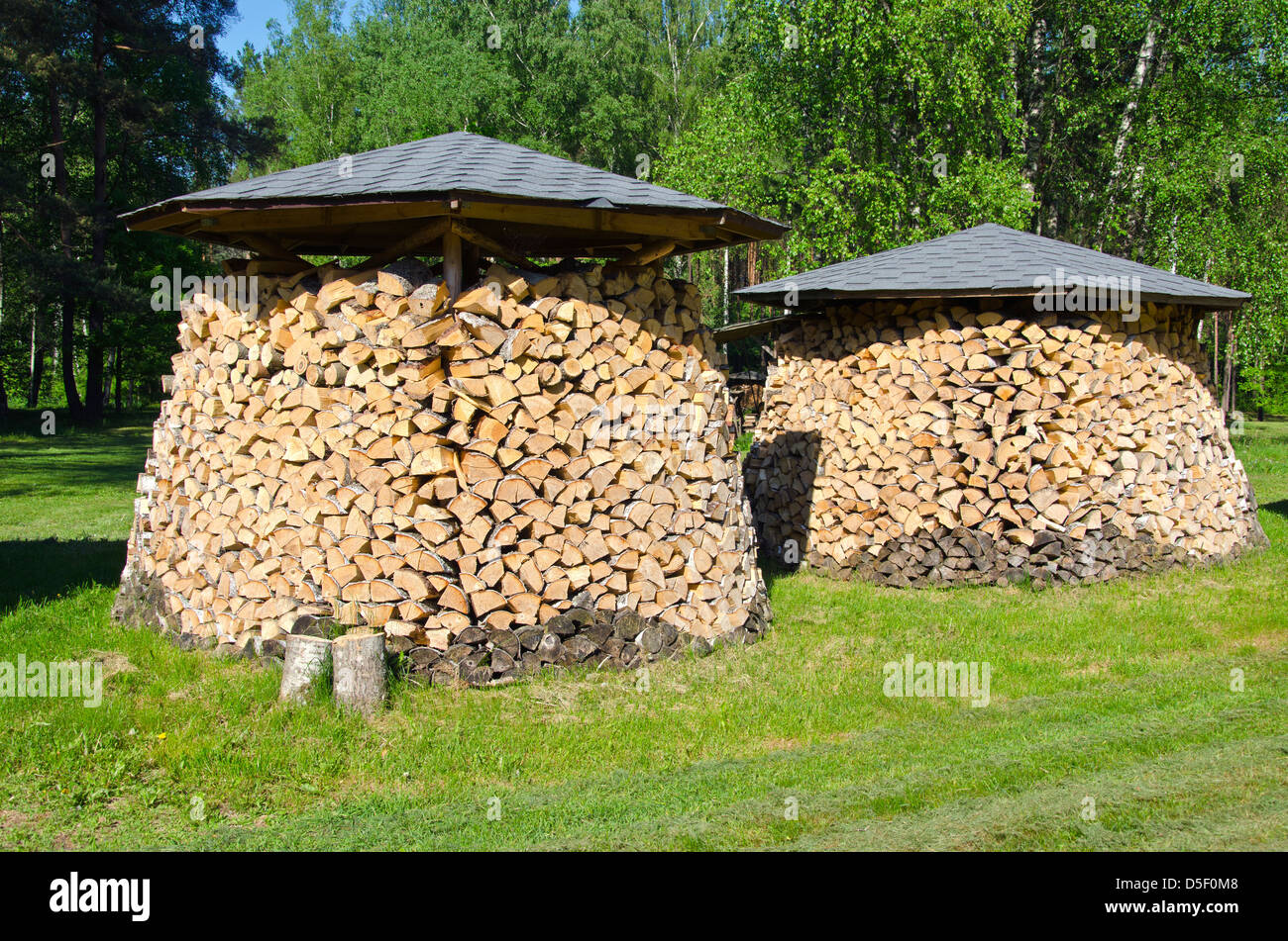 two shopped firewood stacks in summer park - Stock Image
