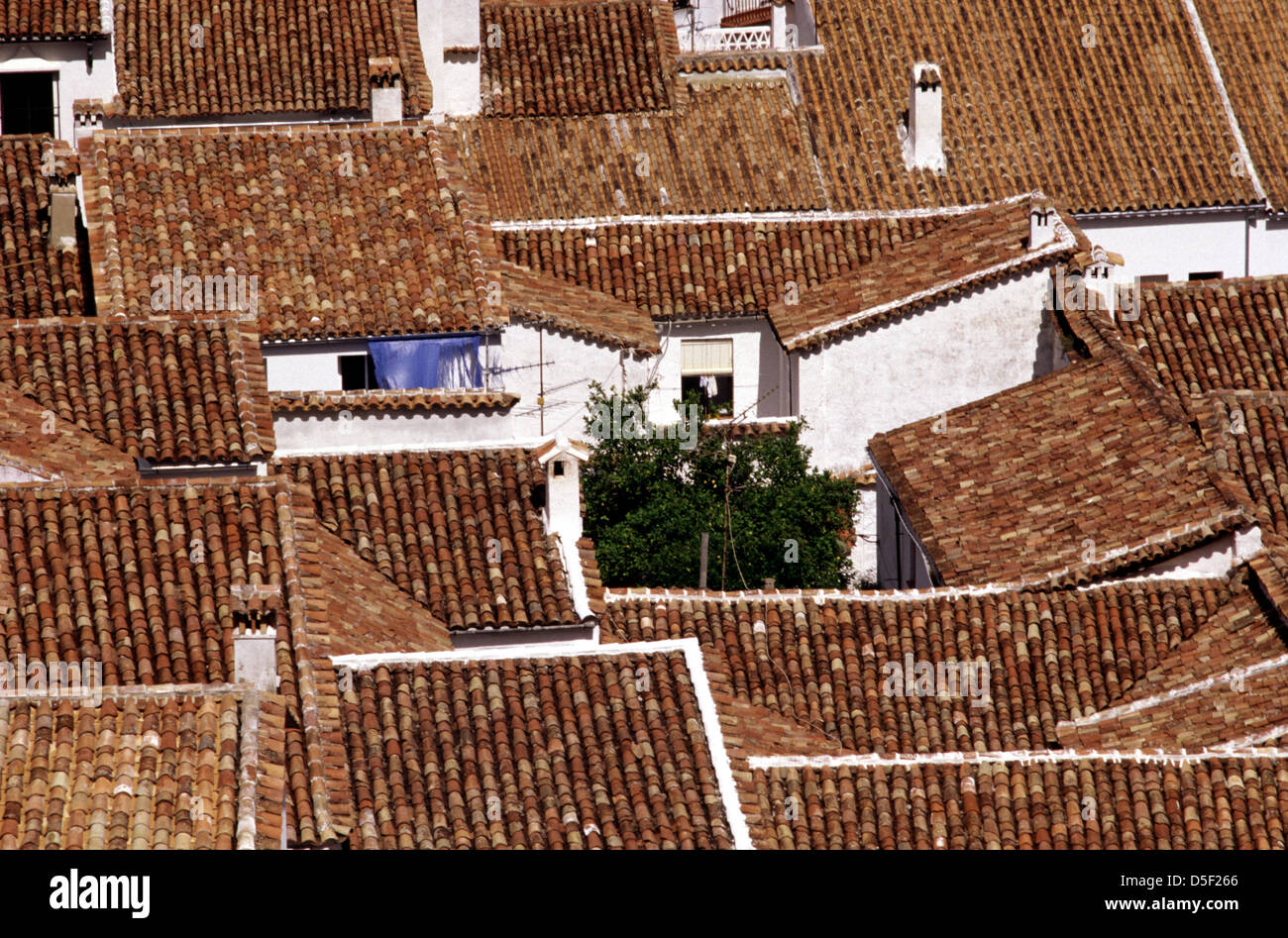 Typical whitewashed village with barrel roof tiles in the Pueblos Blancos region Arcos de la Frontera in Andalusia Stock Photo