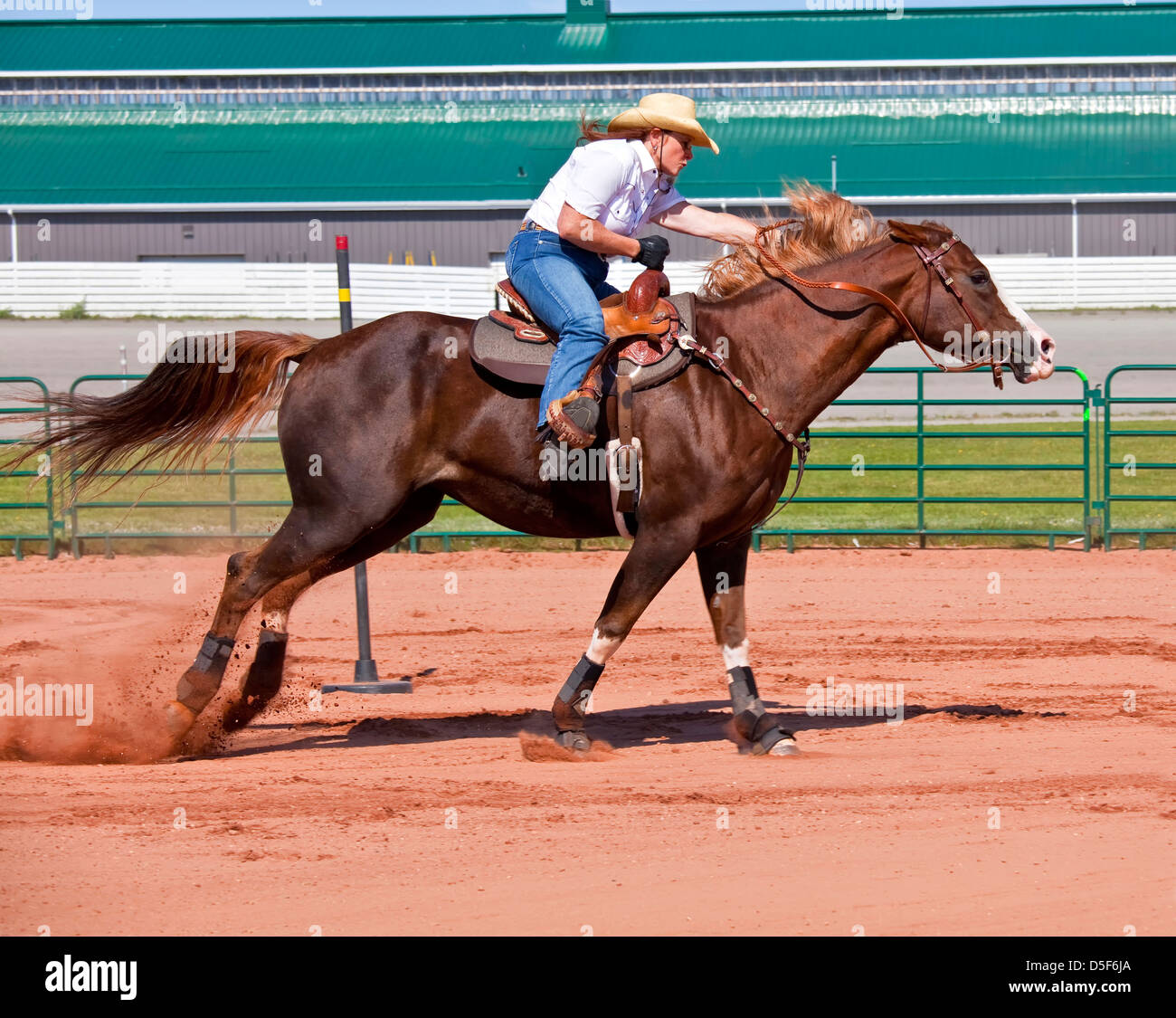 Western Horse And Rider Competing In Pole Bending And Barrel Racing Stock Photo Alamy