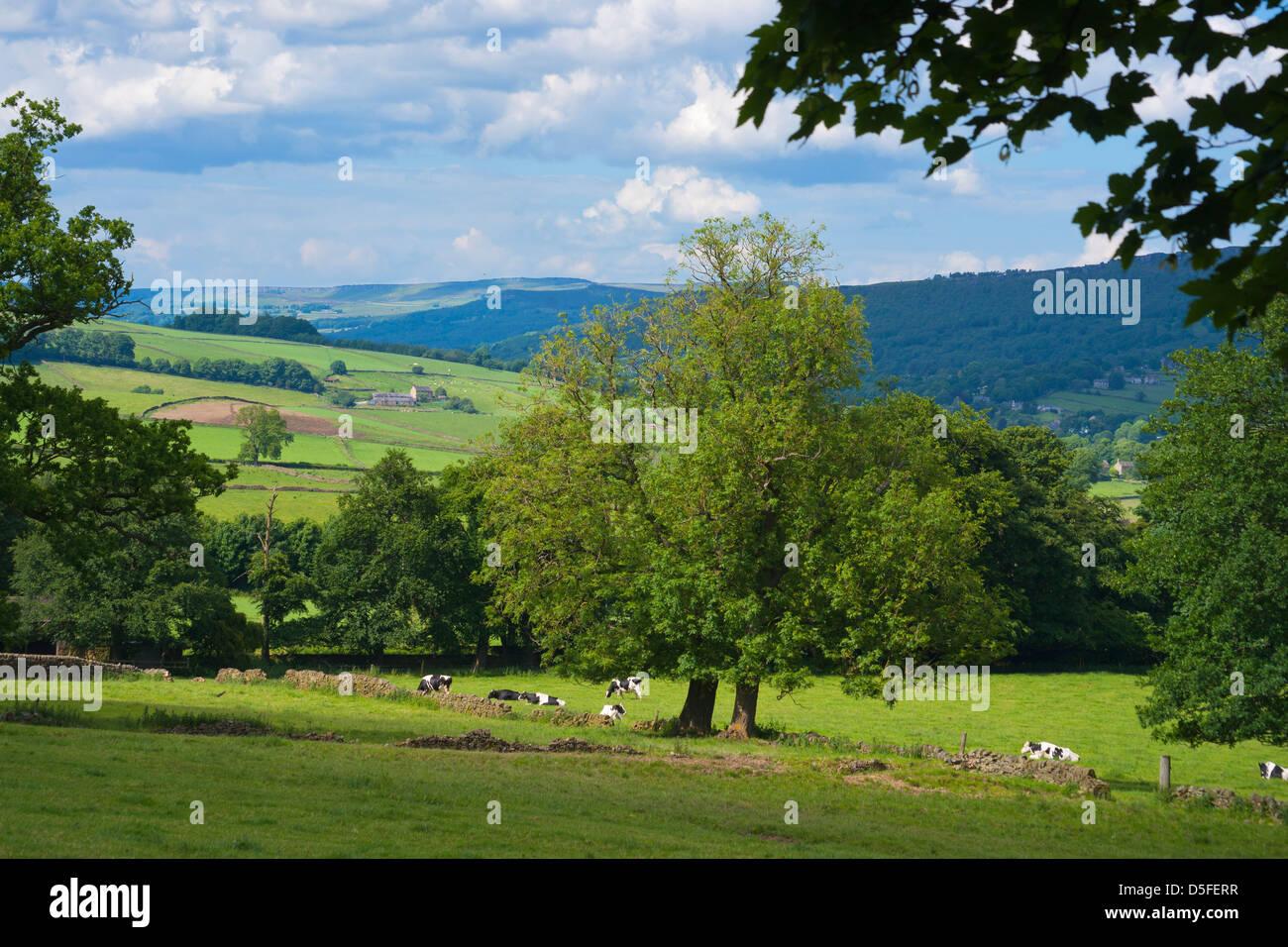 Derwent valley, from Plisley, Chatsworth, Derbyshire, Peak District, England - Stock Image
