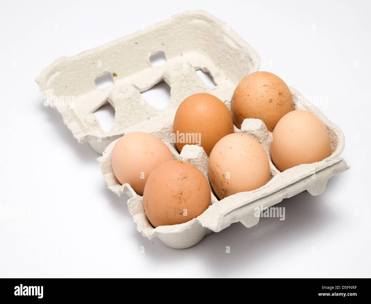Egg Carton Recycled Stock Photos Egg Carton Recycled Stock Images
