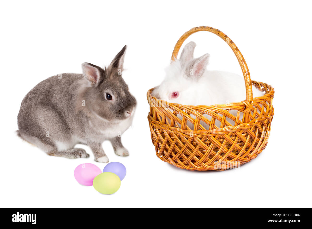 Two adorable furry Easter bunnies, one in a pretty wicker basket with the second sitting facing it in profile, looking - Stock Image