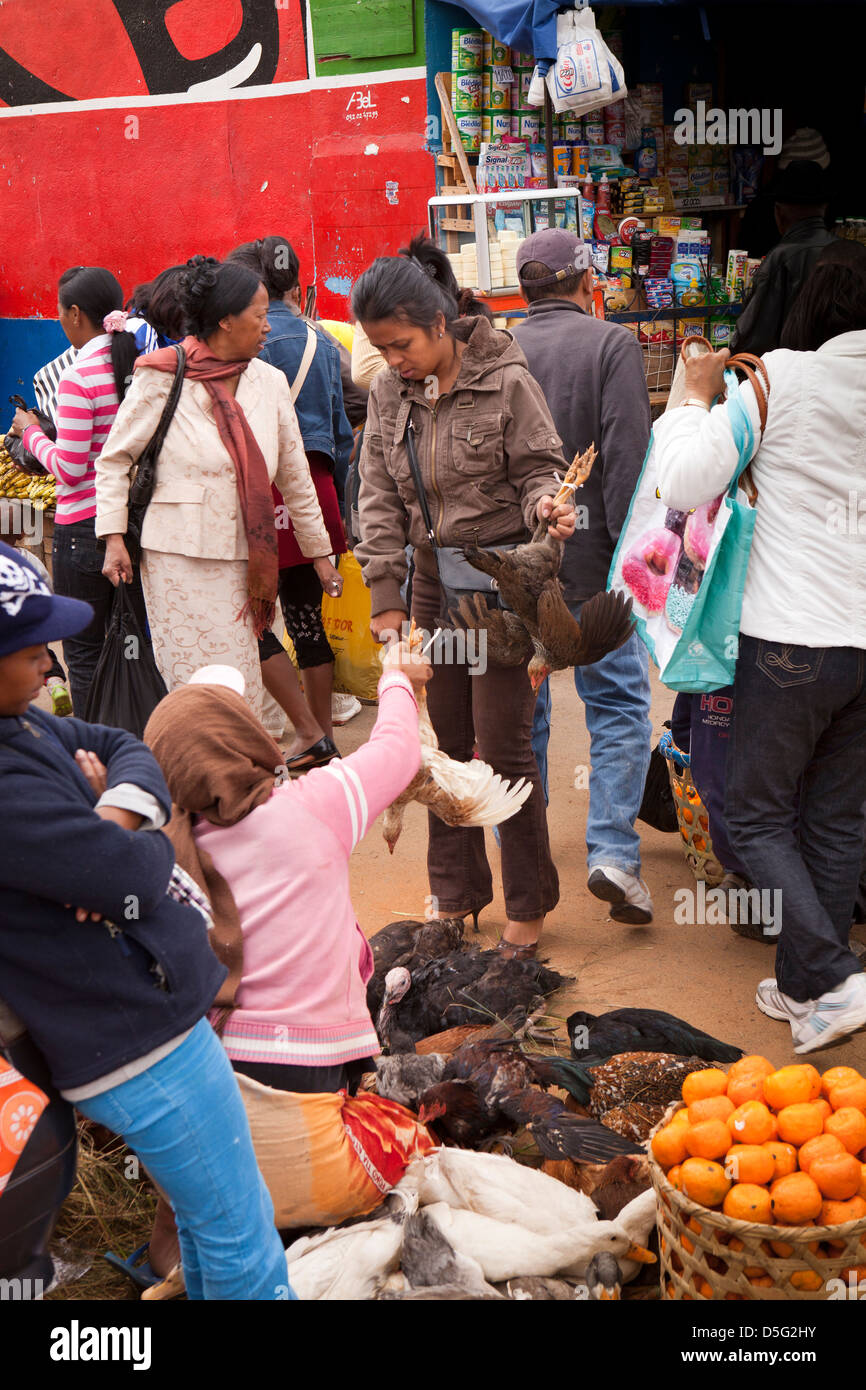Madagascar, Antananarivo, Analakely Market, woman buying chicken at poultry stall - Stock Image
