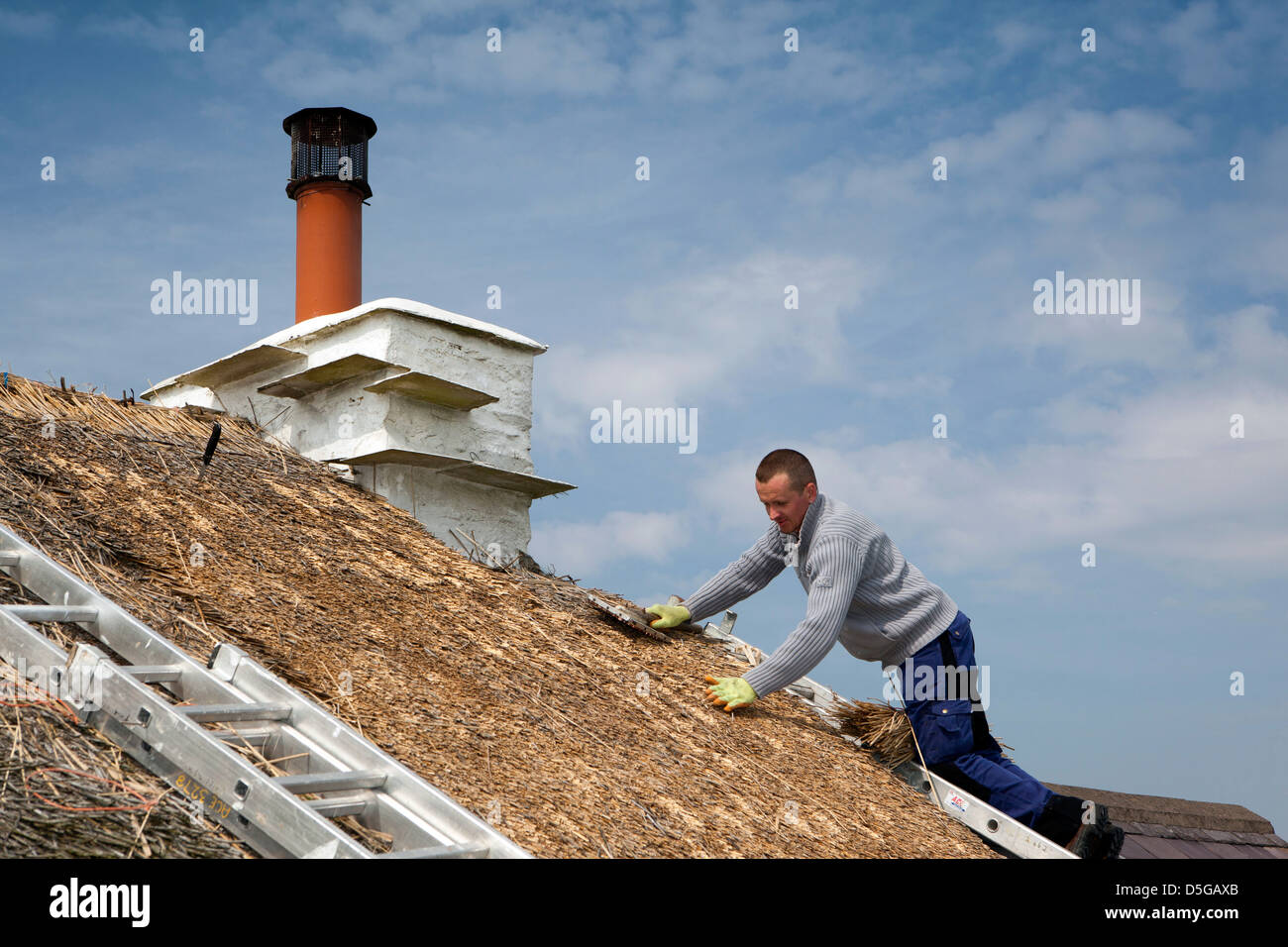 Isle of Man, Cregneash, thatcher re-thatching cottage roof Stock Photo