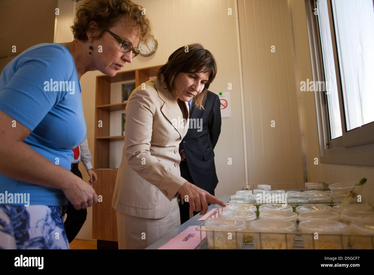 Dutch minister lilanne ploumen (development aid) visits a dutch flower farm outside Addid Abbeba, Ethiopia. Stock Photo