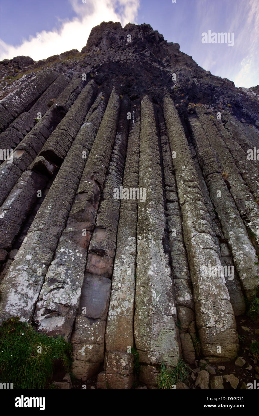 The organ - part of the Giant's Causeway UNESCO World heritage site from Northern Ireland. - Stock Image