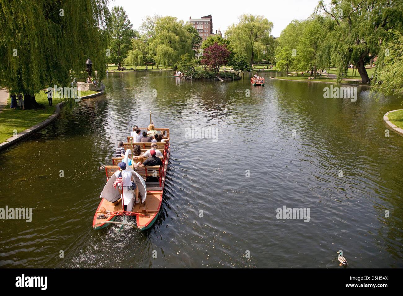 Historic Swan Boats in Boston Public Gardens on a summer day, Boston, MA - Stock Image