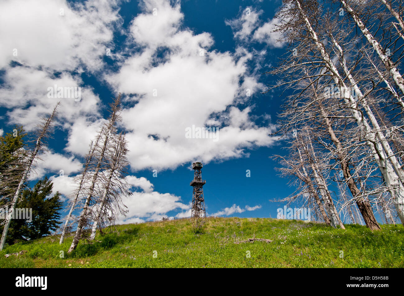 Hat Point fire lookout in Hells Canyon National Recreation Area, Oregon - Stock Image
