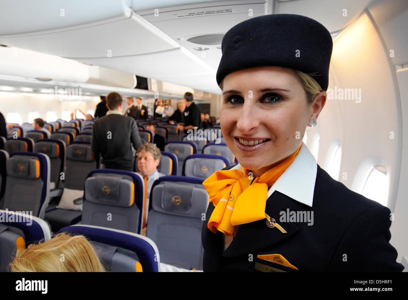 Stewardess frankfurt
