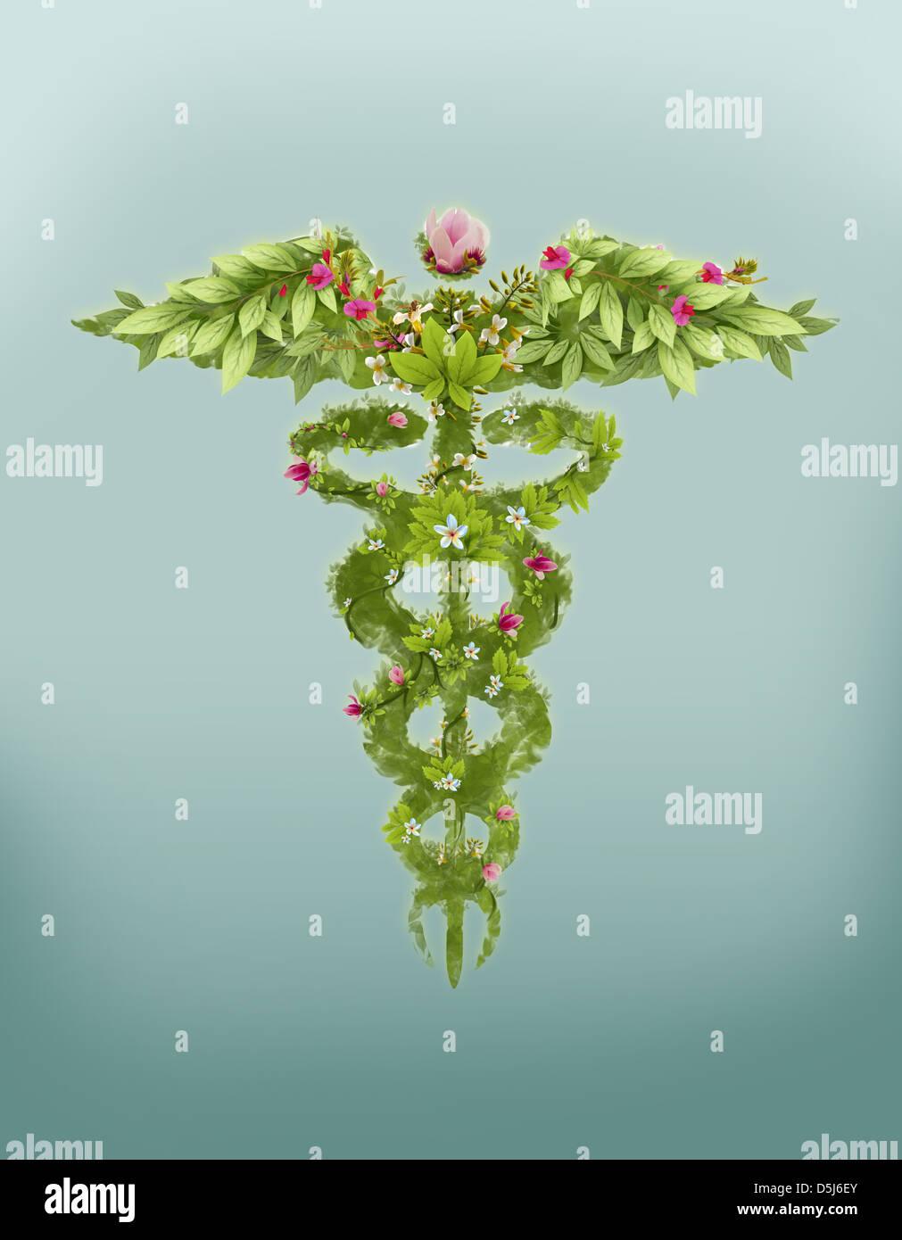 Illustrative image of caduceus symbol made of herbs representing natural medicine - Stock Image