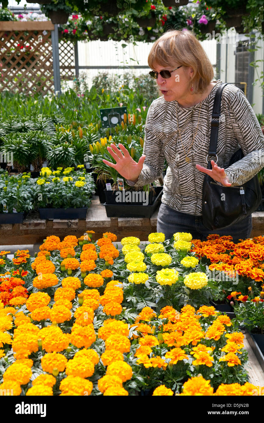 Customer shopping for flowers at a nursery in Jerome, Idaho, USA. MR - Stock Image