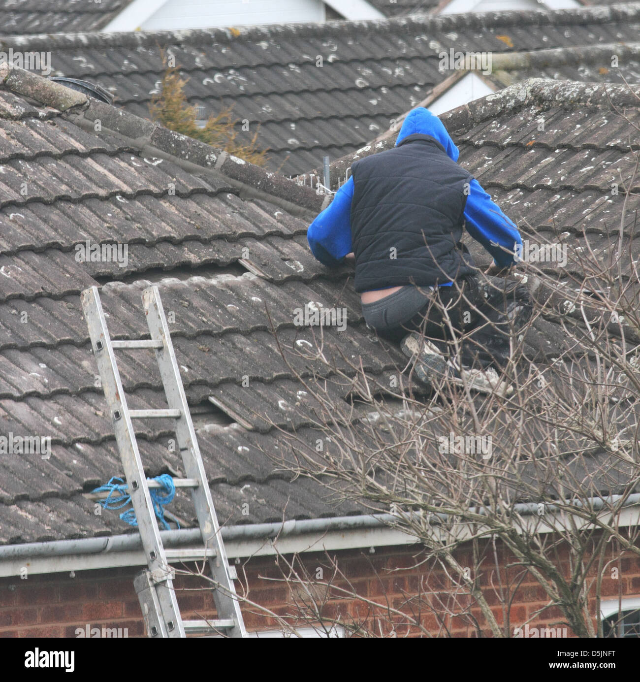 Roofers Repairing a House Roof, UK - Stock Image