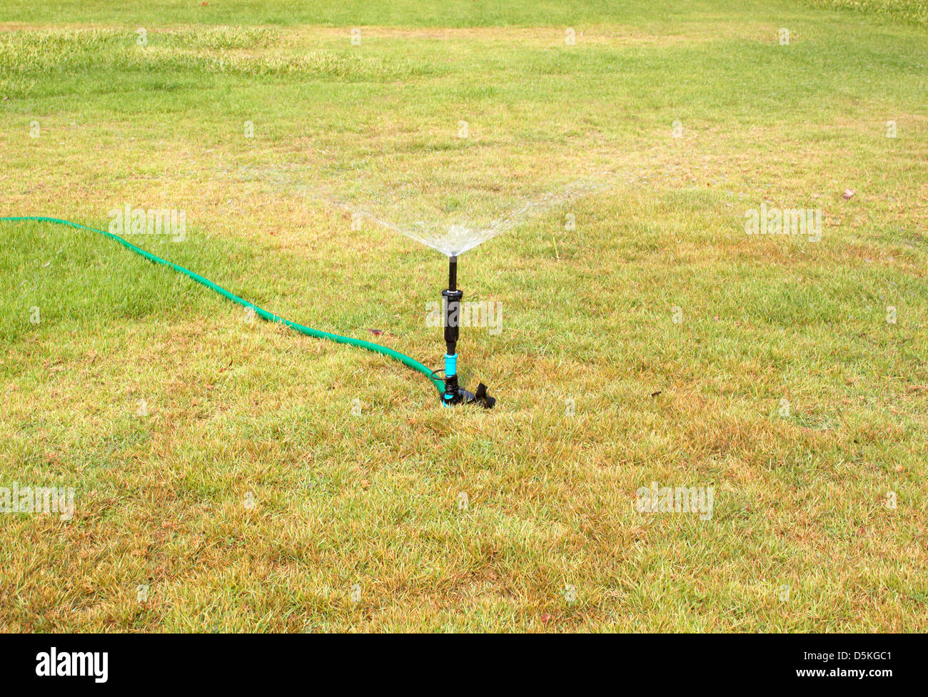 Water sprinkler. Irrigation system - technique of watering in the garden. Lawn sprinkler spraying water over green - Stock Image