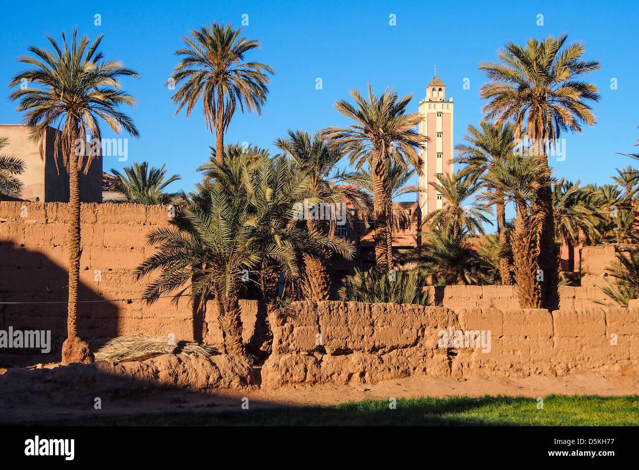 mud wall, minaret and oasis on Sahara desert. Igli, Morocco - Stock Image