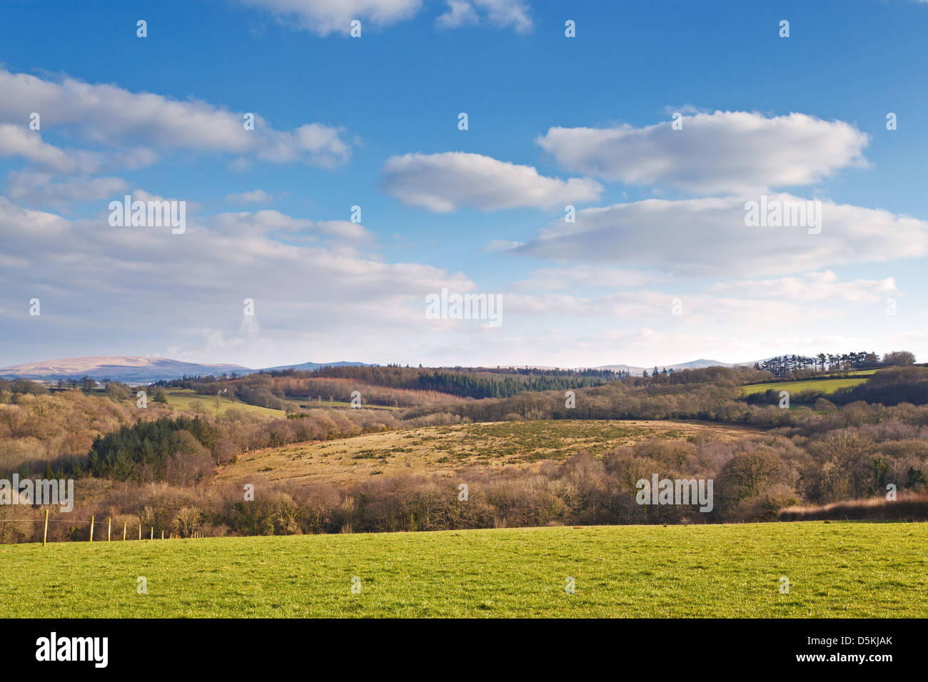 Dartmoor National Park as seen from the hills above Jacobstowe near Okehampton in Devon - Stock Image
