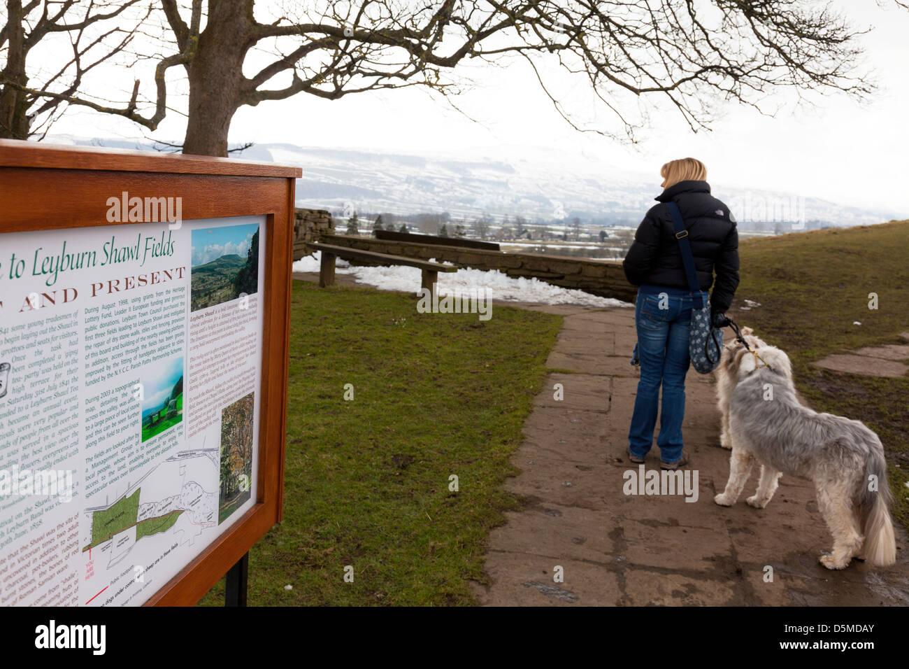 Yorkshire Dales, UK, England Lady and dogs at Leyburn Shawl on path near sign - Stock Image
