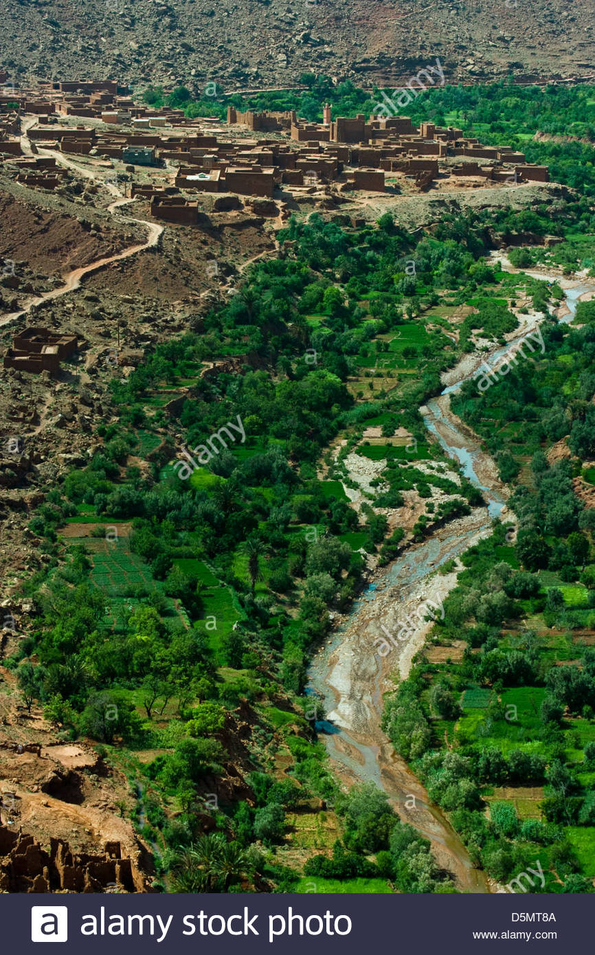 Mud-brick town in the valley of the Draa river - Stock Image