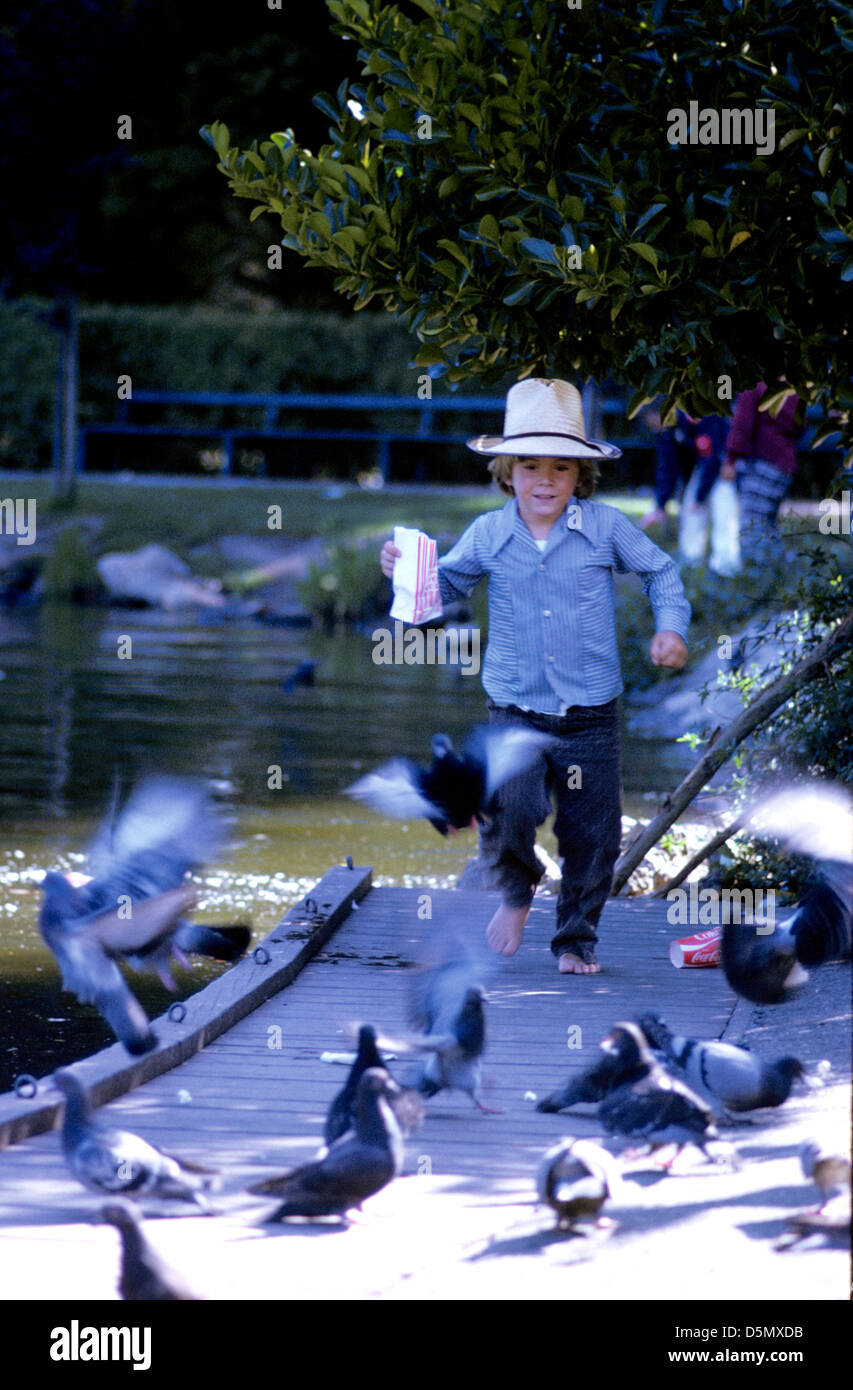 kid pigeons playing park running feeding outdoor CA - Stock Image