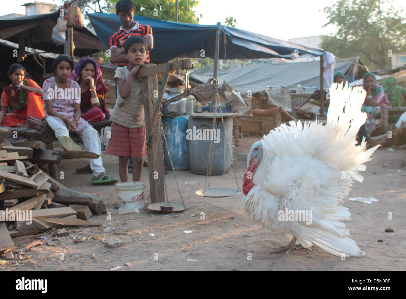 Families of the idol-makers of Ahmedabad, poor but gifted craftsmen, watch a turkey dance in Gujarat, India. - Stock Image