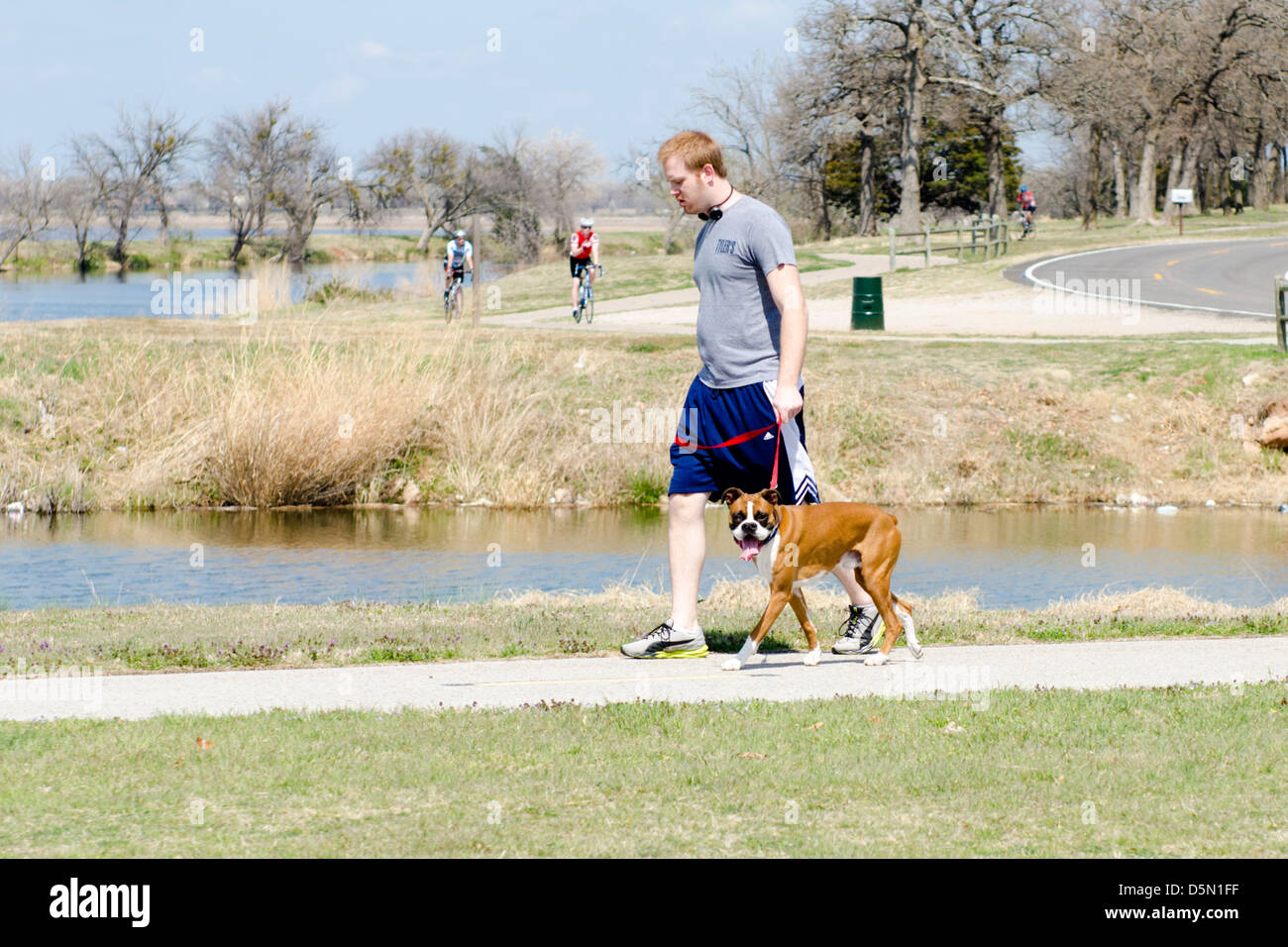 A young red-headed man walks his boxer dog on the trails next to the North Canadian river in Oklahoma City, Oklahoma, - Stock Image