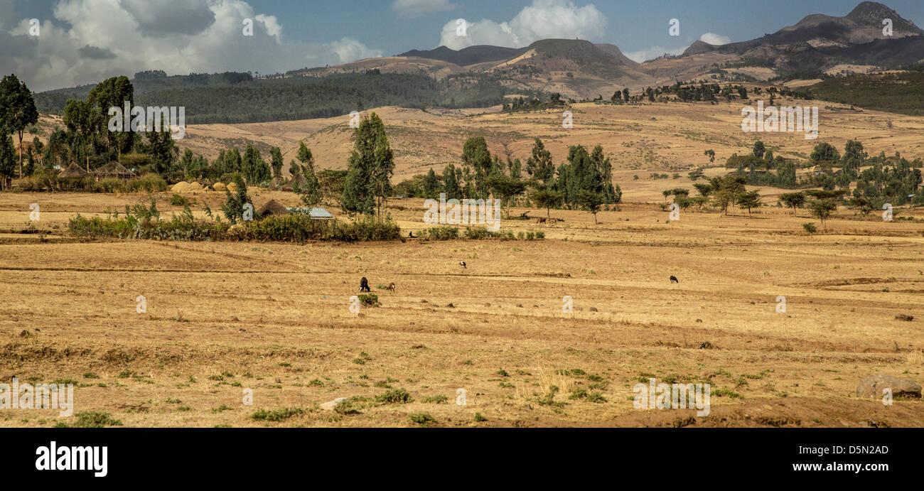 Panoramic view the landscape of the farmlands in Suba area, Ethiopia - Stock Image