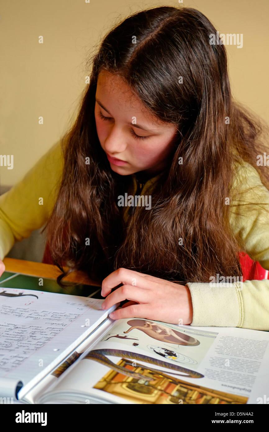 A young Girl doing Homework, Ireland Stock Photo
