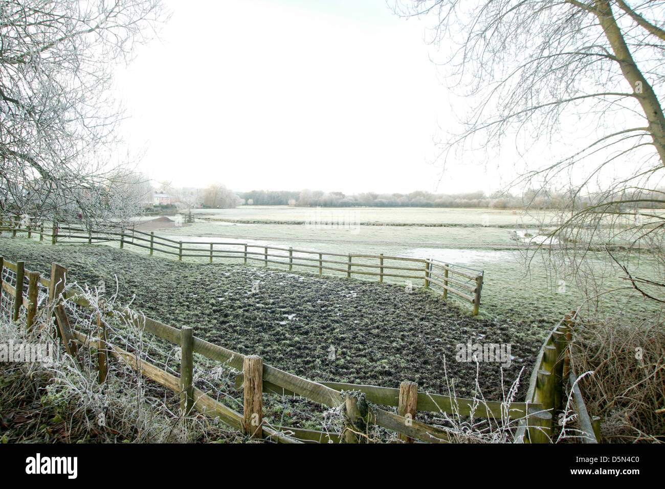 landscape view over winter marshland with fence structure in foreground - Stock Image