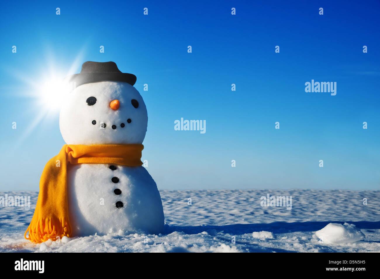 snowman on winter field - Stock Image