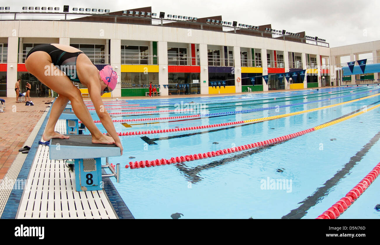 A Girl Is Ready To Dive Into Water On A Swimming Pool During Her Training  Session