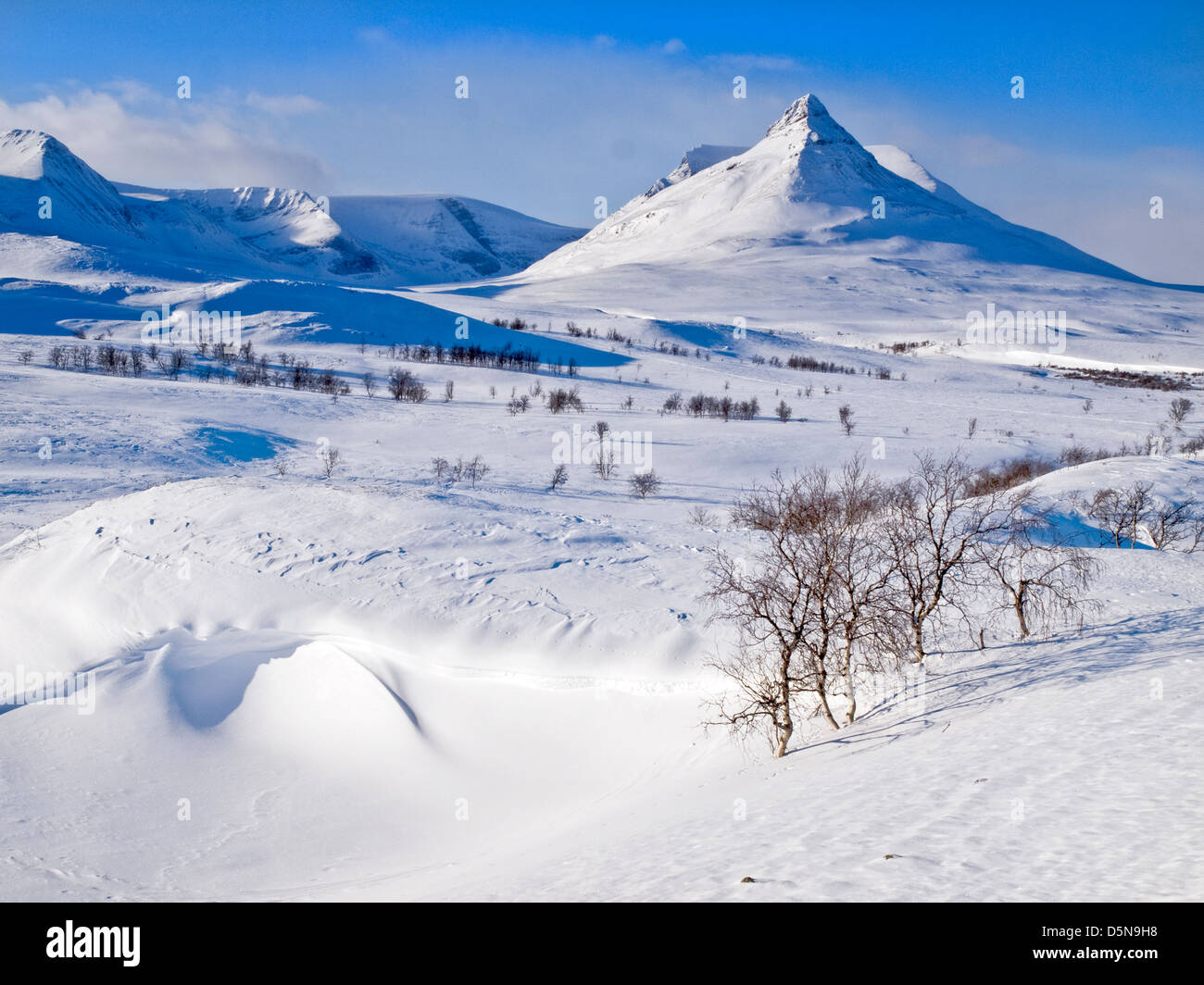 Paltsar mountain in northern Sweden - Stock Image