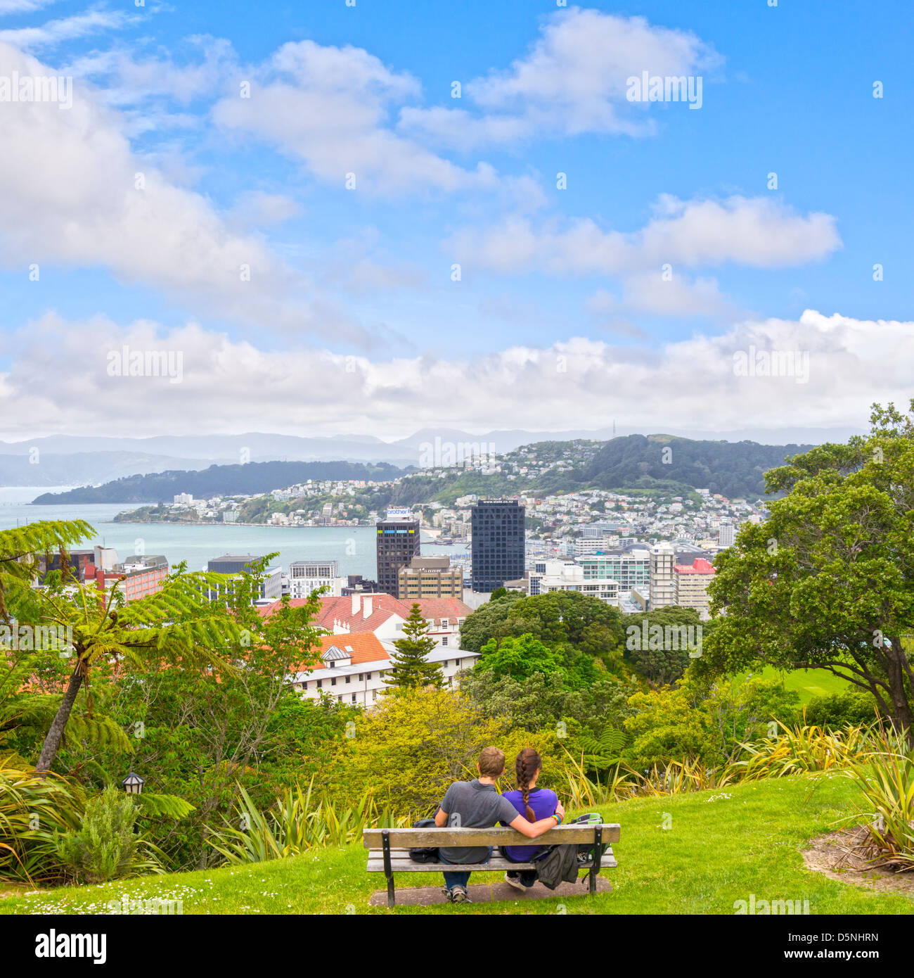 Wellington from the Botanic Gardens, young couple sitting on bench looking at view. - Stock Image
