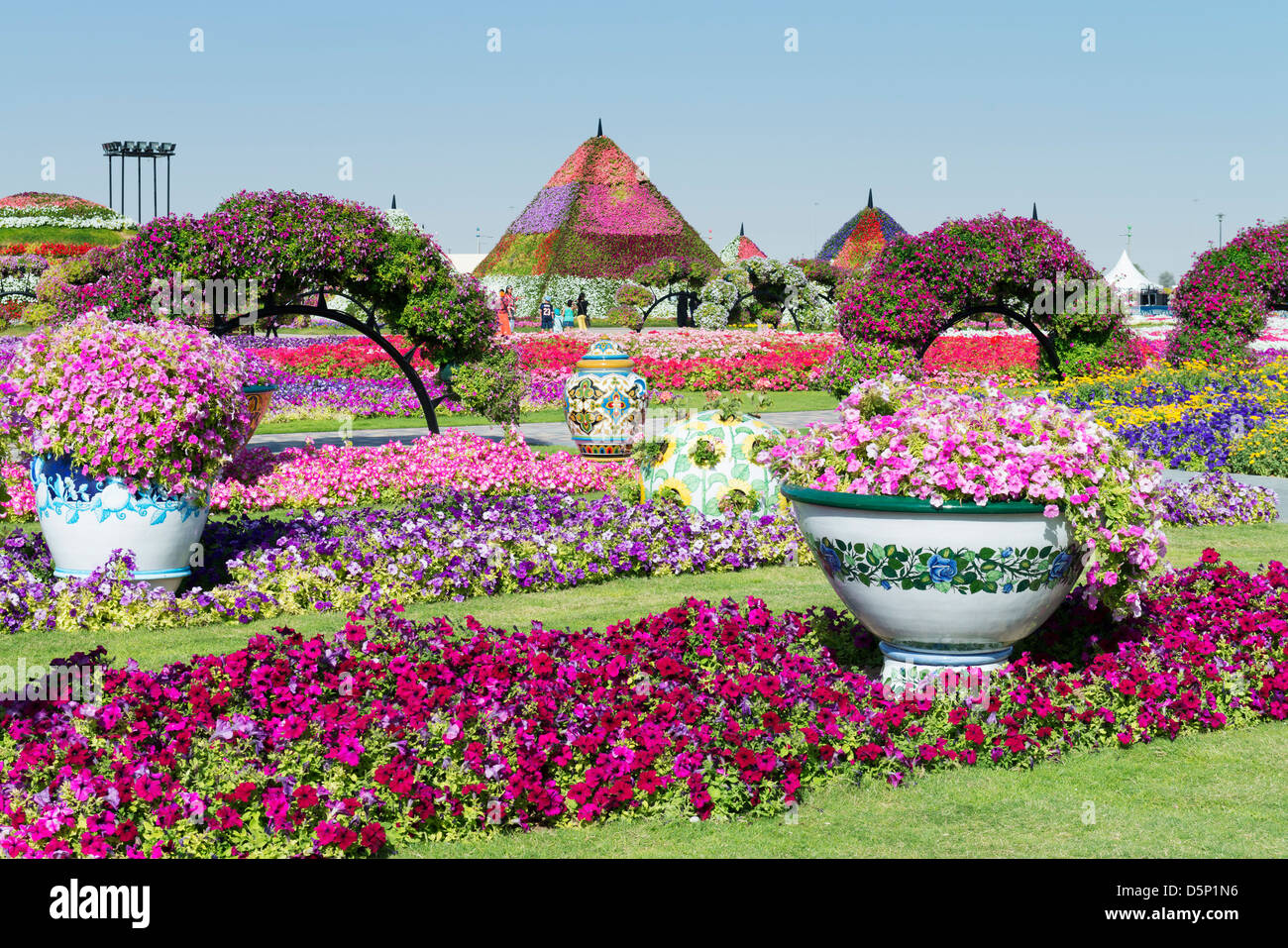 Miracle Garden in Dubai, Opened in March 2013 and claimed to be World's largest flower garden; United Arab Emirates - Stock Image