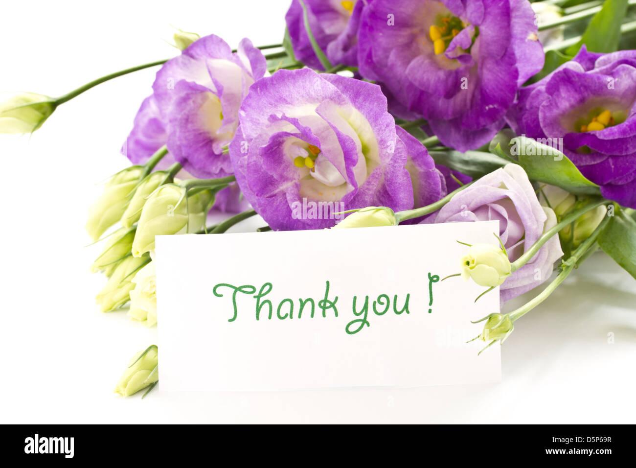 Beautiful bouquet of purple flowers on white lisianthus stock photo beautiful bouquet of purple flowers on white lisianthus izmirmasajfo