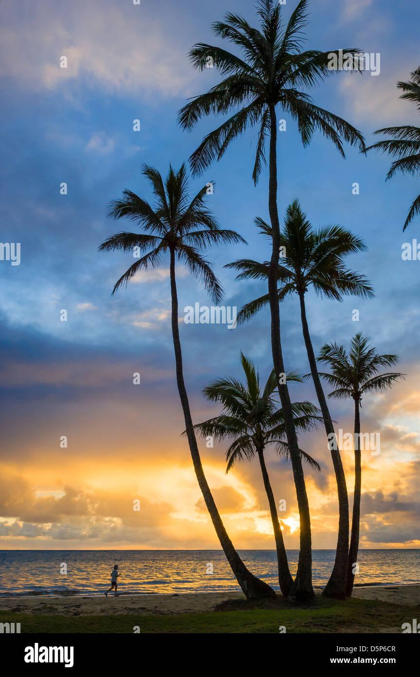 Woman jogging and coconut palm trees at sunrise; Punalu'u Beach Park, Windward Oahu, Hawaii. - Stock Image