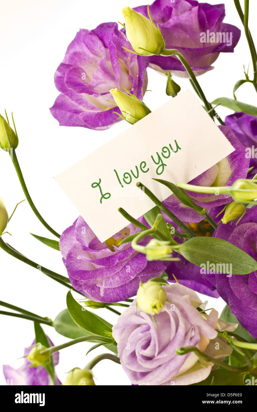 beautiful bouquet of purple flowers on white Lisianthus - Stock Image